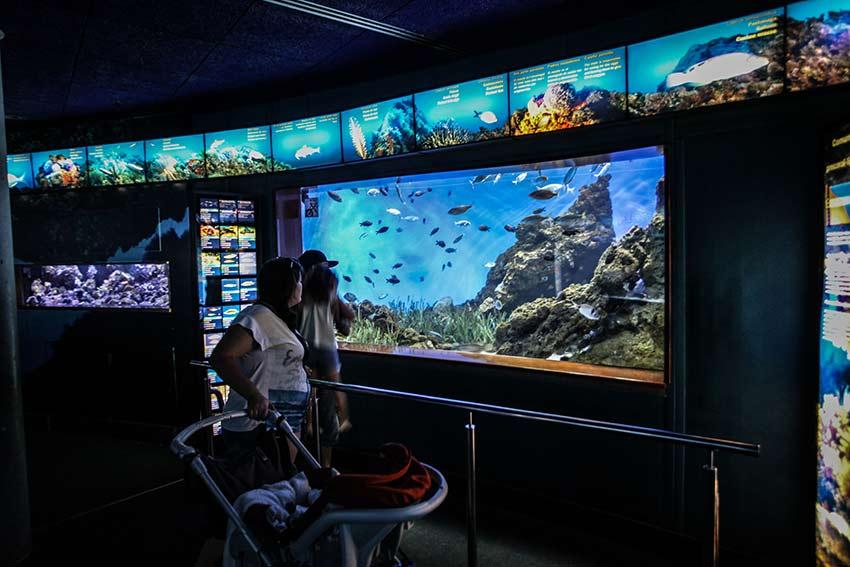 aquarium barcelone en famille