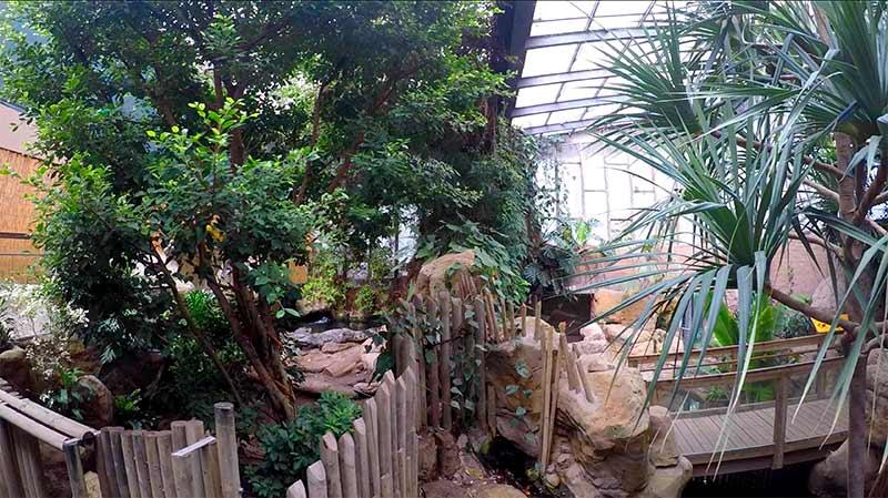 terrarium zoo de barcelone
