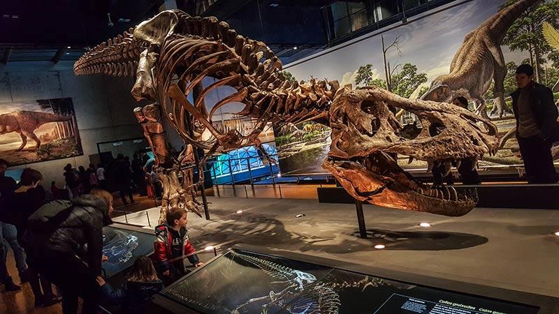 Musee des Sciences CosmoCaixa Barcelone dinosaure