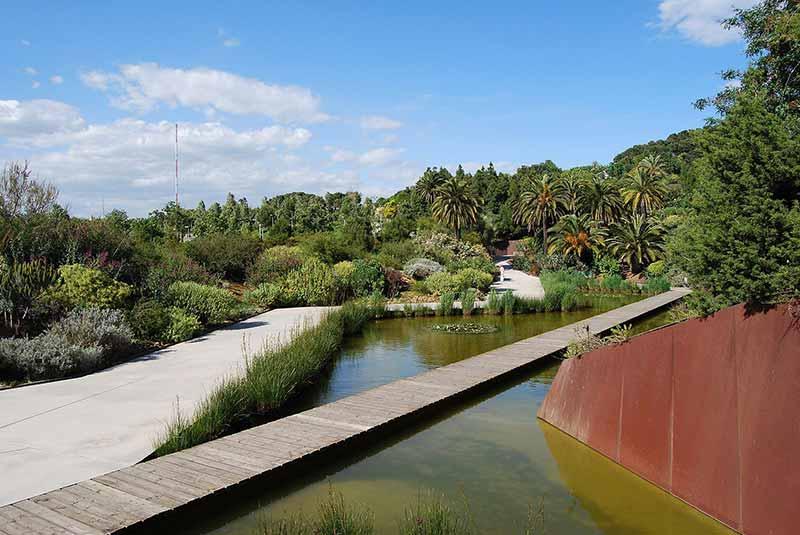 jardin botanique barcelone